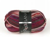 Trendy sock- knitting yarn, col. 3205, 150g/420 m